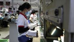Những nhóm lao động nào được nhận tiền hỗ trợ từ Quỹ Bảo hiểm thất nghiệp?