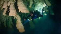 Bí ẩn chưa lời giải về thạch nhũ 5.000 năm trong hang động dưới nước được ví như chuông địa ngục
