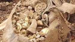 Ấn Độ: Đào đất xây nhà bất ngờ tìm thấy hũ vàng bạc và ruby