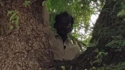 Ấn Độ: Trốn tiêm vaccine Covid-19 bằng cách... trèo lên cây