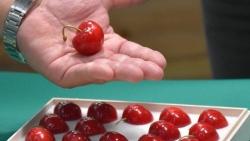 Trái cây siêu đắt đỏ: Hộp cherry thượng hạng của Nhật Bản có giá gần 100 triệu đồng