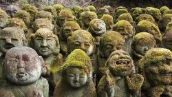 Câu chuyện về ngôi đền với 1.200 bức tượng đá rêu phong tại Nhật Bản