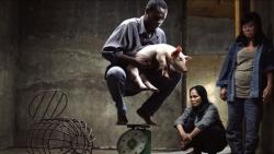 Liên hoan phim quốc tế Berlin 2021: Gấu Vàng cho điện ảnh Romania, phim Việt tỏa sáng với giải thưởng danh giá