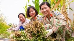 'Những bông hoa' của Bệnh viện Dã chiến cấp 2 Việt Nam tại Nam Sudan