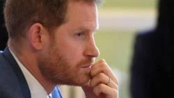 Hoàng tử Harry sẽ thổ lộ những gì trong cuốn hồi ký sắp ra mắt?