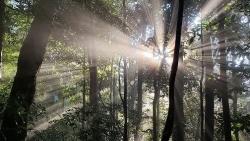 Việt Nam có thêm hai Khu dự trữ sinh quyển thế giới