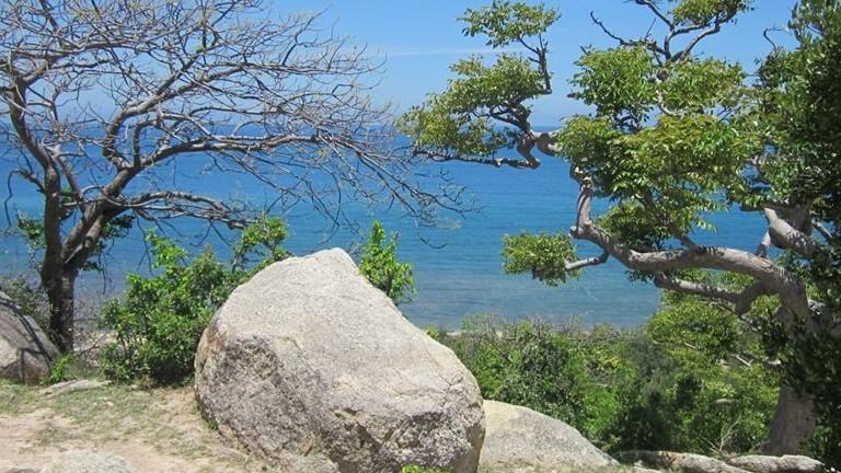 Thiên nhiên tươi đẹp và sinh động ở Khu dự trữ sinh quyển Núi Chúa