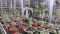 Nguyễn Văn Nam: Ông chủ vườn lan đam mê làm từ thiện
