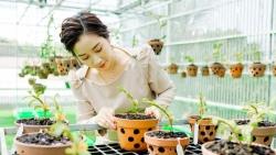 Thái Anh Tuyết - Người phụ nữ dành trọn đam mê cho lan đột biến