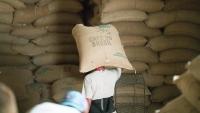 Giá cà phê hôm nay 15/9: Giá còn tăng nhưng sẽ chậm; tin vui từ các hãng vận tải biển