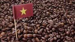 Giá cà phê hôm nay 11/5: Giảm sốc sau đợt tăng sốc, chuyên gia tư vấn nhà đầu tư nên đứng ngoài quan sát