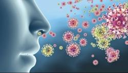 Triệu chứng Covid-19: Tự kiểm tra về khả năng nhiễm bệnh và cần làm gì để bảo vệ người quanh mình?