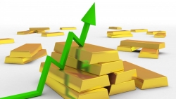 Giá vàng hôm nay 5/9, Giá vàng neo đỉnh hai tháng, sẽ tiếp đà tăng, yếu tố nào góp phần thay đổi cuộc chơi?
