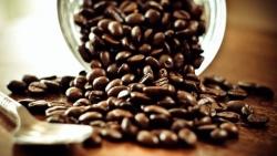 Giá cà phê hôm nay 28/9, Đồng loạt đảo chiều giảm sâu, xuất khẩu cà phê Việt Nam giảm tháng thứ 5 liên tiếp
