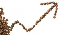 Giá cà phê hôm nay 28/10, Đảo chiều giảm giá; Robusta đứng ở mức cao 10 năm,