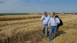 Tổng thống Putin nói gì sau khi Nga xuất khẩu lượng ngũ cốc kỷ lục?