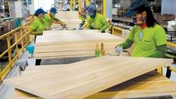 Xuất khẩu ngày 16-19/2: Người Trung Quốc thích gỗ Việt, Mỹ hủy áp thuế chống bán phá giá với tôm Minh Phú