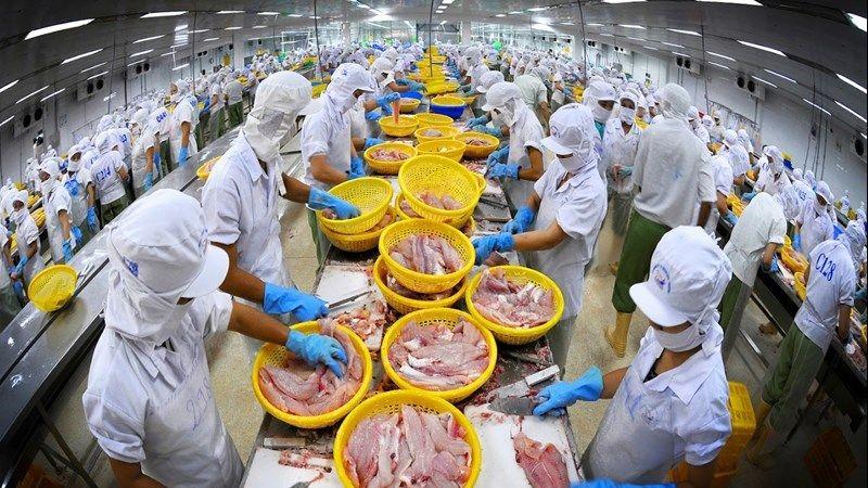 Xuất khẩu thủy sản - Điểm sáng trong quan hệ thương mại Việt Nam-Australia
