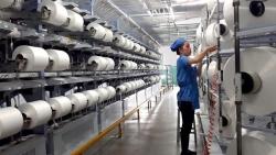 Ấn Độ không áp thuế chống bán phá giá xơ sợi nhân tạo Việt Nam