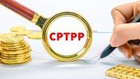 Nhận được 11 cái 'gật đầu' từ các thành viên, Anh sẽ sớm công bố kế hoạch gia nhập CPTPP