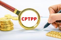 Chuyên gia: Sau Trung Quốc, đến lượt Thái Lan 'gõ cửa' CPTPP