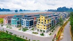 Bất động sản mới nhất: Thị trường Hà Nội yếu, nhà liền kề phía Tây tăng giá đột biến; địa ốc Vân Đồn 'cất cánh'