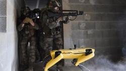 Quân đội Pháp sẽ đưa 'siêu khuyển robot' ra chiến trường
