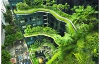 Phát triển không gian xanh cho các đô thị trên thế giới