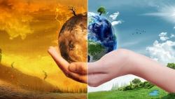 Nửa đầu năm 2021, thế giới chi kỷ lục 174 tỷ USD để cứu hành tinh