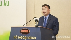 Đẩy mạnh xuất khẩu rau quả Việt Nam sang Liên minh châu Âu