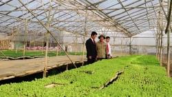 Agribank – Chủ lực cung ứng vốn cho tam nông, tạo động lực tăng trưởng kinh tế
