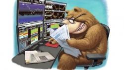 Thị trường chứng khoán ngày 2/6: Hậu 'sự cố HOSE', nhà đầu tư như ngồi đống lửa