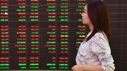 Thị trường chứng khoán ngày 14/9 - Lình xình nối tiếp lình xình