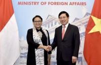 Phó  Thủ tướng Phạm Bình Minh tiếp Bộ trưởng Ngoại giao Indonesia