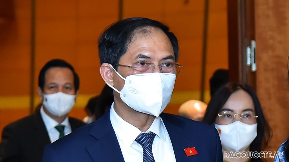 Bộ trưởng Ngoại giao Bùi Thanh Sơn trao đổi về thúc đẩy ngoại giao vaccine