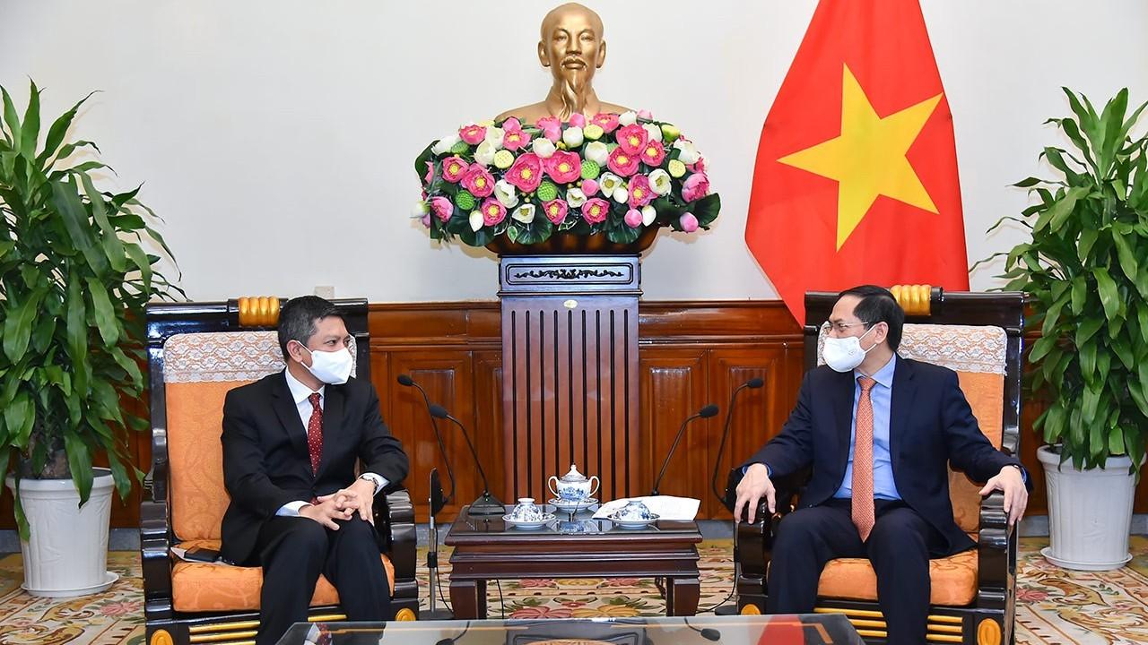 Bộ trưởng Bùi Thanh Sơn đề nghị Việt Nam-Indonesia tiến tới công nhận lẫn nhau về Hộ chiếu vaccine