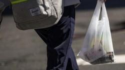 New Zealand: Cấm sử dụng đồ nhựa một lần từ năm 2025