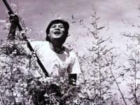 Công chiếu phim Việt Nam trên truyền hình Ấn Độ